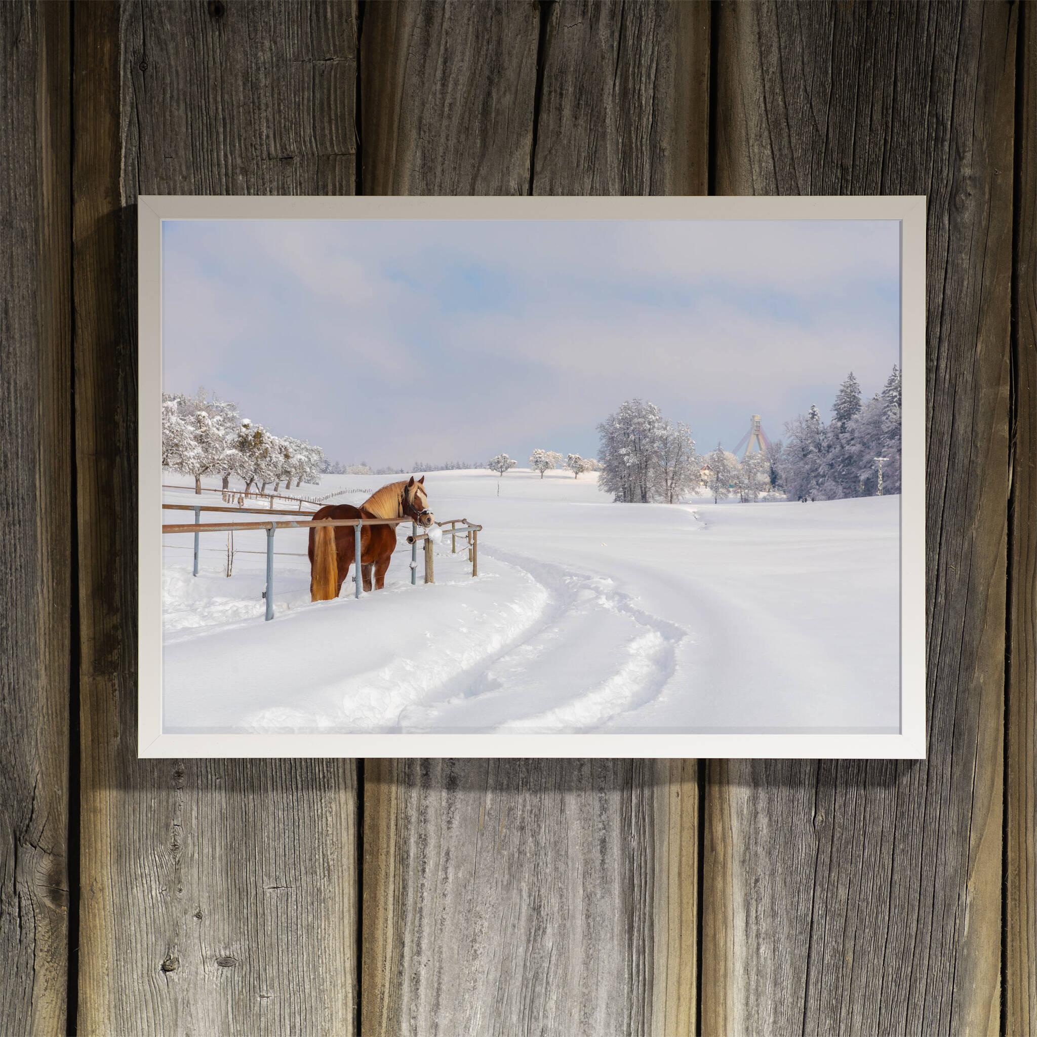 Pferd in der Winterlandschaft Rahmen 'Riga' A3 ohne Passepartout
