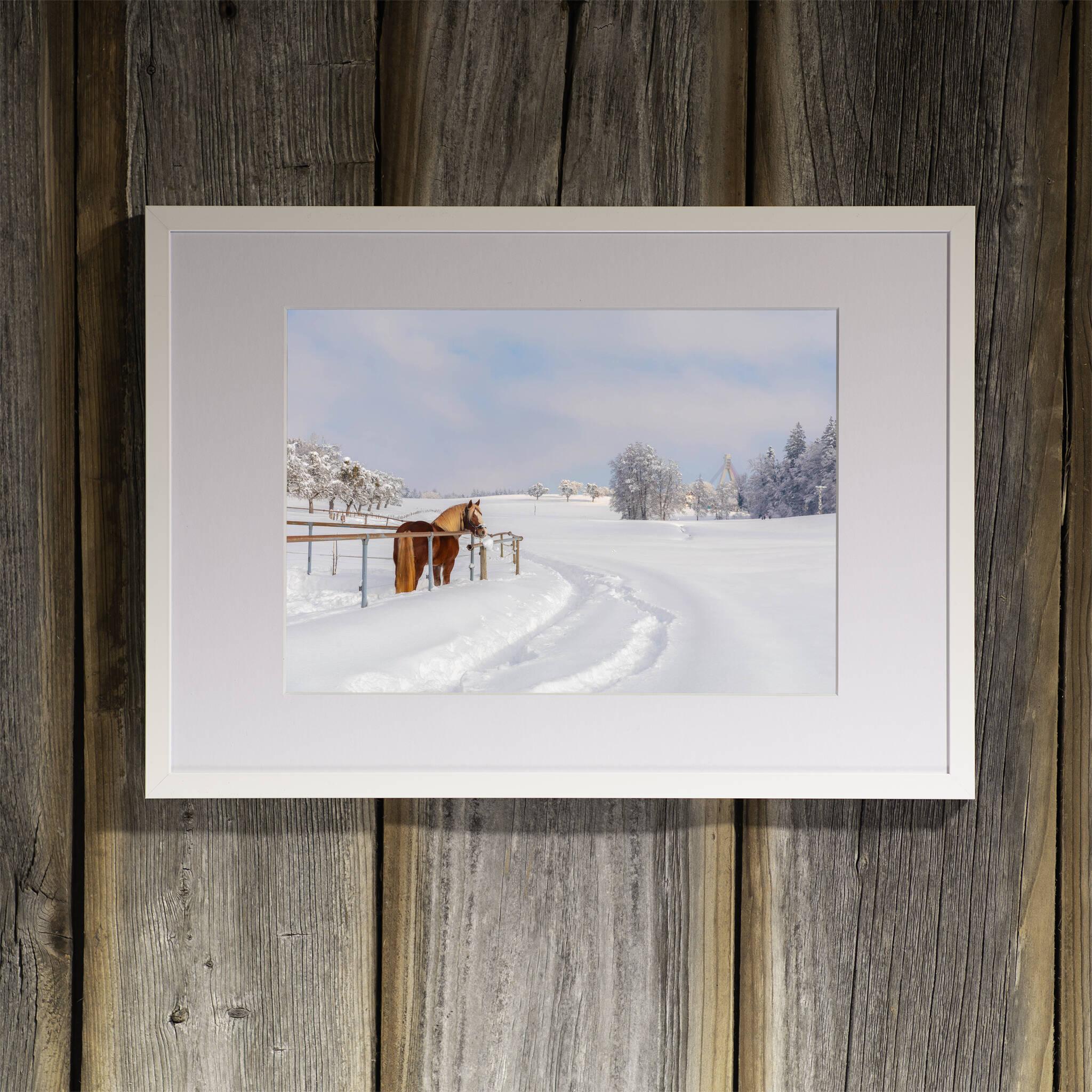 Pferd in der Winterlandschaft Rahmen 'Riga' A3 mit Passepartout