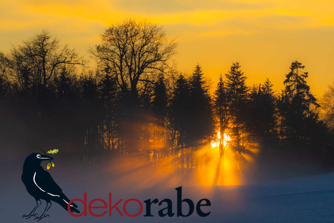 Geschenkoption Motiv Sonnenuntergang im Wald